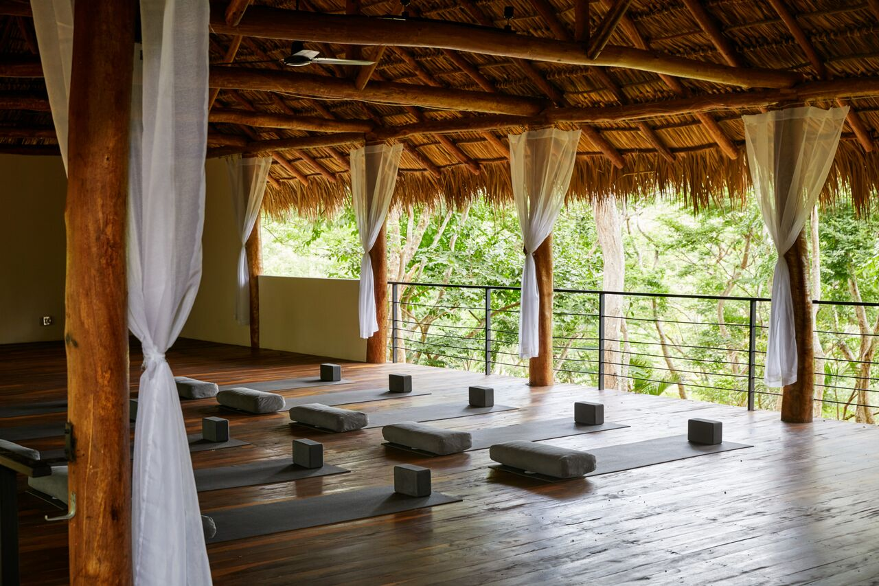 Tree Casa Yoga Shala with Jungle View